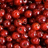 Redcurrants Available from TPS Fruit and Veg, Wholesale Suppliers in Aberdeenshire and Moray of Fresh Fruit and Vegetable