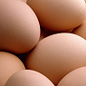 Fresh Eggs  Available from TPS Fruit and Veg, Wholesale Suppliers in Aberdeenshire and Moray of Fresh Fruit and Vegetables