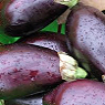 Aubergines Available from TPS Fruit and Veg, Wholesale Suppliers in Aberdeenshire and Moray of Fresh Fruit and Vegetable
