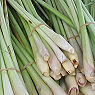 Fresh lemon Grass Available from TPS Fruit and Veg, Wholesale Suppliers in Aberdeenshire and Moray of Fresh Fruit and Vegetable