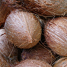 Coconuts Available from TPS Fruit and Veg, Wholesale Suppliers in Aberdeenshire and Moray of Fresh Fruit and Vegetable