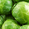 Brussel Sprouts Available from TPS Fruit and Veg, Wholesale Suppliers in Aberdeenshire and Moray of Fresh Fruit and Vegetable