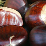 Chestnuts Available from TPS Fruit and Veg, Wholesale Suppliers in Aberdeenshire and Moray of Fresh Fruit and Vegetable